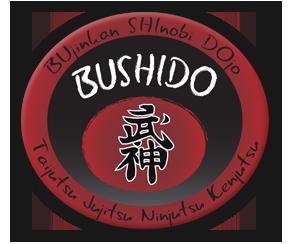 Shinobi Dojo logo